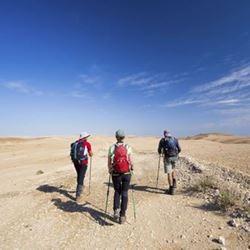 Изображение Кольцевой прогулочный маршрут вокруг горы Ар-Ардон