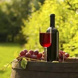 wine bottle - בקבוק יין