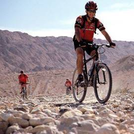 Picture of Bicycle tour in Ramon crater