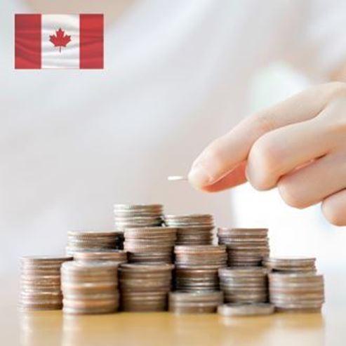 תמונה של דולר קנדי