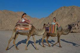 Изображение Фотография тура на верблюдах