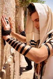 Picture of Picture of a young man praying at the Western Wall