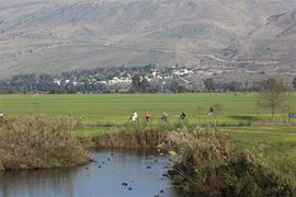 Picture of Picture of the Hula Valley