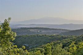 Imagem de  Green Galilee
