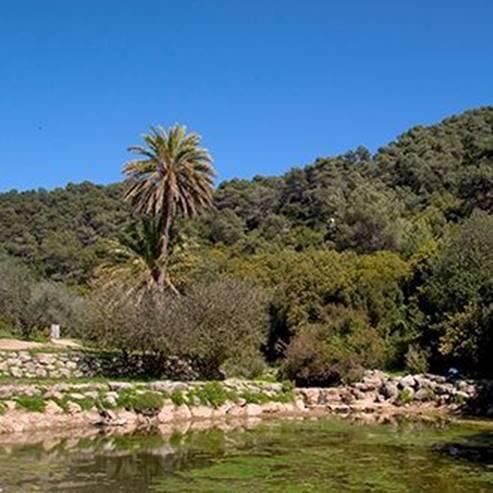 פרק הכרמל האגם - Carmel the river park