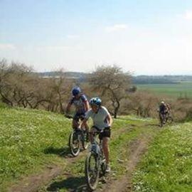 אופניים גליל - Galil Bikes