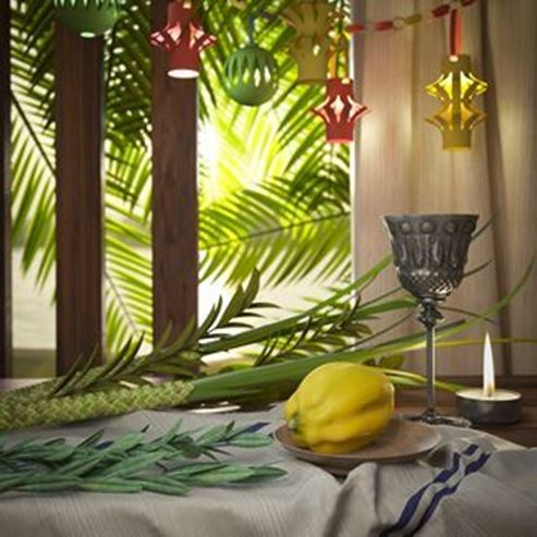 Picture of Sukkot
