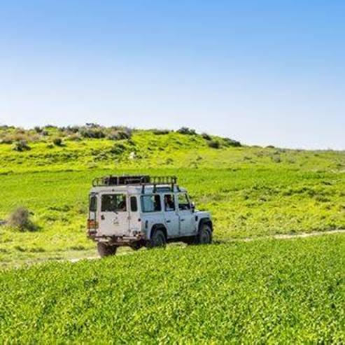 Neveh Shalom - נווה שלום