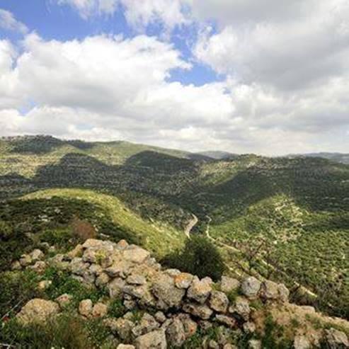 The Jerusalem Hills - הרי ירושלים