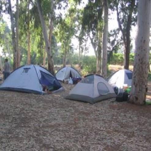 אוהלים בחניון לילה גן לאומי ירקון - Tents in campsite Yarkon national park