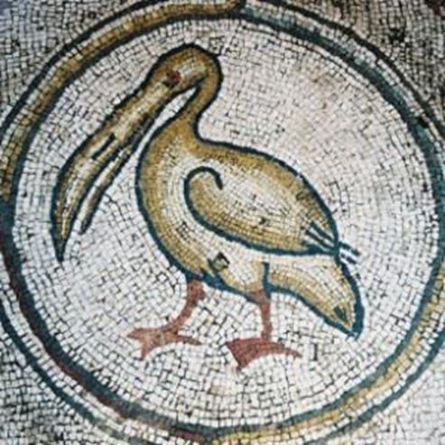 פסיפס הציפורים - Birds mosiac