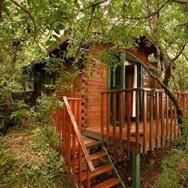 ארץ הגליל - בקתה מעץ מבט נוסף מבחוץ - Eretz HaGalil - Wooden Cabin Outside view