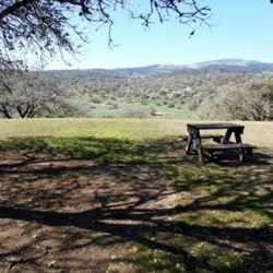 בית ספר שדה אלון תבור - מדשאה בחצר - Tavor Alon Field School - Lawn