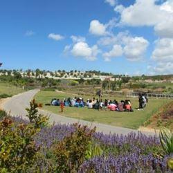 """אנשים יושבים בפארק ע""""י אלבטרוס - People Sitting at Albatros park"""