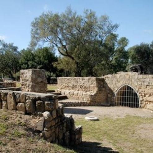 Ashkelon National Park Attractions The official website for