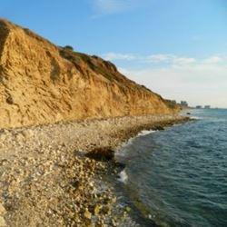 רצועת החוף - The coastal strip