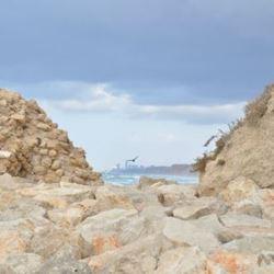 סלעים  - Rocks