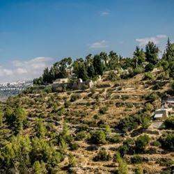 הר עין כרם - Mounr Ein Kerem
