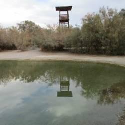 בריכת עין פשחה - Ein Feshcha Pool