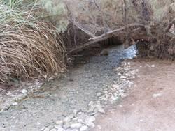 מים זורמים  - Flowing water