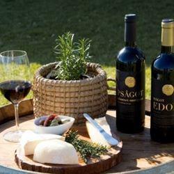 יין ופלטת גבינות משובחות - Wine and a plate of fine cheeses