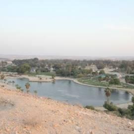 תצפית על הפארק - View of the park