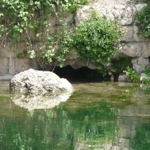 נחל ציפורי - Zipori River