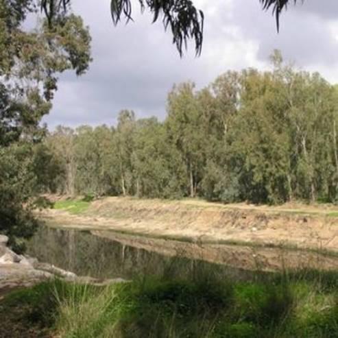 שפך נחל שורק - Nahal Soreq estuary