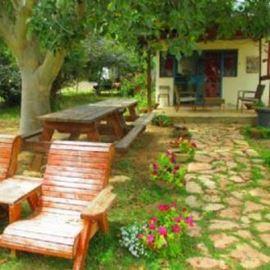 צימר כפר נבון - פינת ישיבה בחצר - Kfar Navon Zimmer - Outdoor seating area