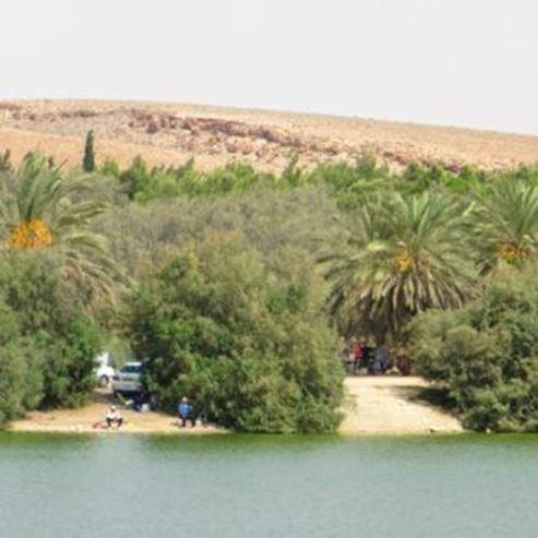 אגם ירוחם מתוך פארק ירוחם - Yerucham Lake from Yeruham Park