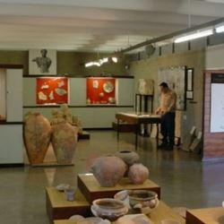 מוזיאון לארכיאולוגיה אזורית וים תיכונית - Museum of Regional and Mediterranean Archeology