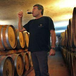 אדם שותה יין - Man drinking wine