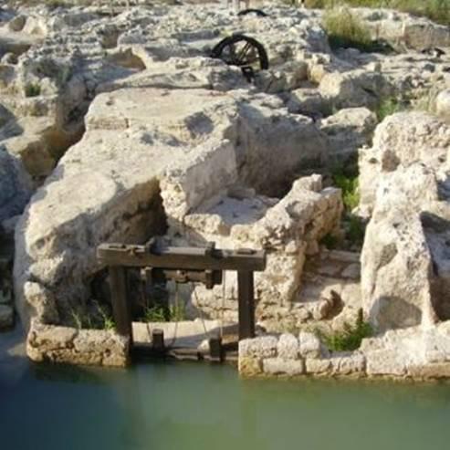 שמורת טבע נחל תנינים - Nahal Taninim Nature Reserve