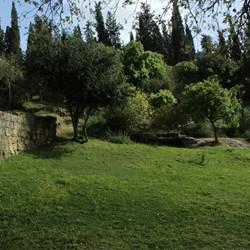 פארק בית שערים - Beit Shearim Park