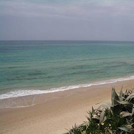 נוף חוף פלמחים - Palmachim beach view
