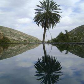 מעיין עין פרת - Ein Prat Spring