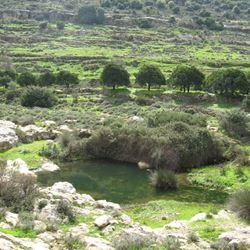 ואדי קלט עין פרת - Wadi Kelt Ein Prat