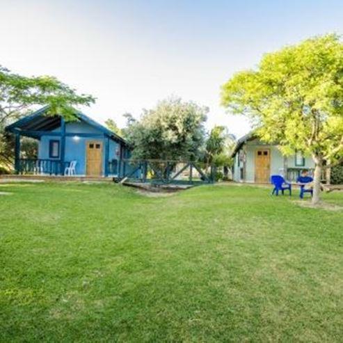 בכרם הזיתים - חצר - BeKerem HaZeitim - Courtyard