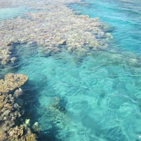 חוף אלמוג - Almog Beach