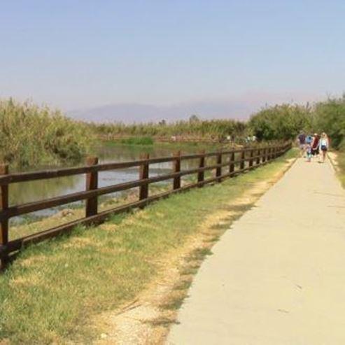 מסלול הליכה בשמורת החולה - A walking trail in the Hula Nature Reserve