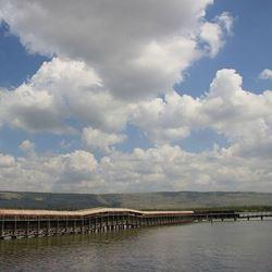 שמורת החולה - Hula Nature Reserve