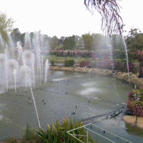 פארק אוטופיה - Eutopia Park