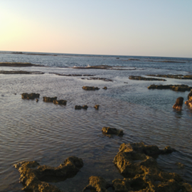 חוף שדות ים  - Sdot Yam Beach