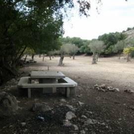 ספסל עם שולחן בחוות משמר הכרמל - Bench with a table at Mishmar Hacarmel Farm