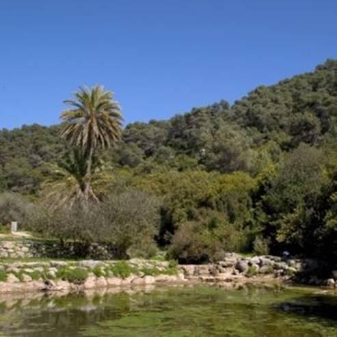 פארק הכרמל - Carmel Park
