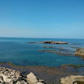 חוף הבונים - HaBonim Beach