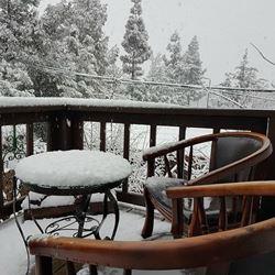 אודם הבר - שלג במרפסת - Odem HaBar- Snow on the Balcony