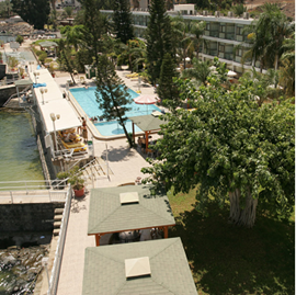 מלון רון - בריכה - Ron Hotel - Pool