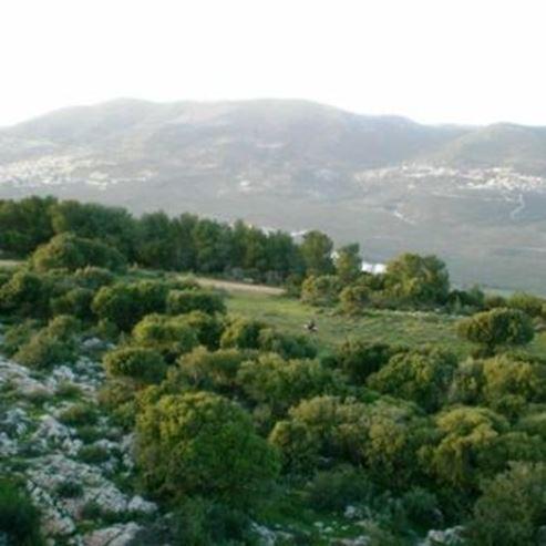 Kama Village  - כפר קמה