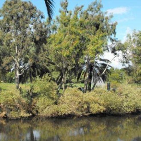 פארק הירקון- גני יהושע - HaYarkon - Yeoshua Gardens Park